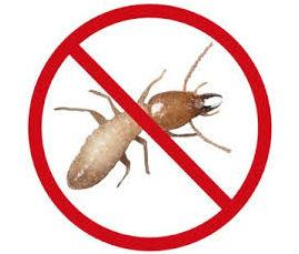 Pest Termite Control  Each home is unique so treatment should be customized accordingly. By working closely with your termite specialist, you can develop an appropriate and effective termite treatment plan for your home.  FIRSTLY, it is essential for the termite controller to complete a thorough inspection of the buildings and surrounds. The property owner should be supplied with a written inspection report and detailed specifications for an integrated termite control program. It is essential that the inspection and report be received before any protective measures are commenced. A professional termite inspection and report, including a termite control protection advice costs vary depending on the size of the house and the style of construction and ease of inspection access. A professional termite inspection and report could save you thousands of Rupeas.