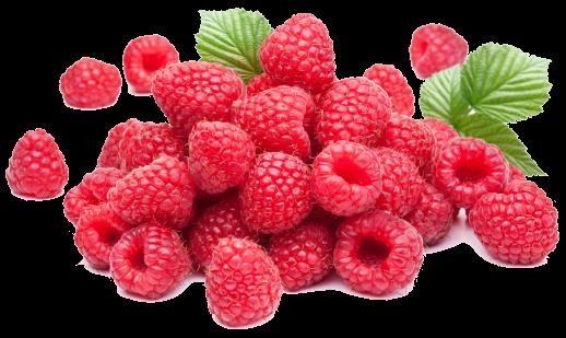 mer!Raspberries are a great source of fiber—some of it soluble in the form of pectin, which helps lower cholesterol. One cup of raspberries has 8 grams of fiber—and a study in the Journal of Nutrition suggests that eating more fiber may help prevent weight gain or even promote weight loss. Over the course of a two-year study, researchers found that when study participants boosted their fiber by 8 grams for every 1, 000 calories, they lost about 4 1/2 pounds. Try it for yourself. If you're consuming 2, 000 calories per day, aim to increase your fiber by 16 grams recommends Dr Deepa Agarwal, Best Dietician in Hyderabad