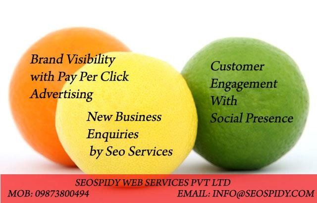 Conceptualize your business vision into the website which speaks louder than words. Understand User Behavior on your website. Crisp your website content in such a way that it attracts visitor attention and turn him into the prospective buyer of your products and services.  If you have any doubt on how to optimize website promotion in search engines then Try Seospidy lead generation seo services. Want to increase profitability to your business visit seospidy today leading Website promotion, Online Business Promotion, Google Seo Promotion, seo services provider company in South Delhi, North Delhi, West Delhi, East Delhi Ncr, Noida, Gurgaon, Surat, Agra, Jaipur, Faridabad, Gurgaon, Mumbai, Ludhiana, Chandigarh India.