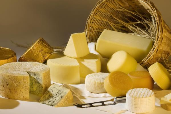 We supply premium Imported & India cheese products. - by Bakery Raw Materials | Vizag | Andhra Pradesh., Visakhapatnam