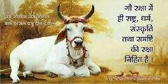 जय गोमाता की  - by Best Samaj Sevi In Beawar Gou Rakshak, Ajmer