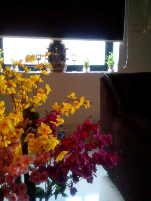aroma body spa in vijay nagar