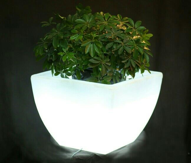 LED Planters for garden, resorts, restaurants, marriage party, and many more uses.. - by Great Indoors, Jaipur
