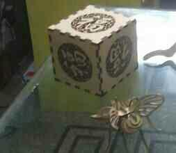 3d laser cut fly very beautiful design and developed by Kiranholographics