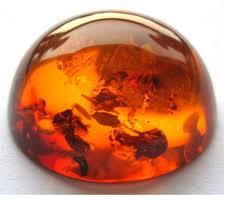 Mystical Power of Gemstones Infection leads to one or other diseases resulting from disorders caused by organisms. These are the results of spreading bacteria, viruses, fungi or parasites. It is a fact that many organisms living on our bodi - by Fematta Online, Bengaluru