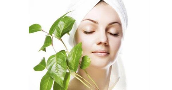 Skin treatment clinic in chandigarh  Jasmine oil is a magical and most effective medicine for curing skin problems. It can be applied to cure any type of wound, eczema, itching, burns, pain and wound which do not heal fast. Apply jasmine paste of 8- 10 flowers to cure any type of skin problem and blood disorders. It brings immediate relief. Apply paste of honey and cinnamon on the affected area. Within a few days, the itching, eczema, and boils like disorders of skin get cured. Boil 20gm arand root in 400 ml water till only 100ml water is till left. Give this to the patient. It is beneficial in curing all types of skin problems. Grind Gokharu seed's kernel in water and apply on the affected area. Grind the Gorakhmundi leaves in water and apply the paste or apply the juice of leaves on the affected part. It cures many types of skin problems, boils of syphilis and old wounds. In case of itching, eczema, boils, blood and other skin problems. Mix 2 – 5gm turmeric powder in cow's urine and give it 2 – 3 times a day to the patient. Mix the turmeric powder in butter and apply on the affected area. Give 5 gm turmeric with 2gm sugar every morning and evening to the patient. Skin itching take 40gm cumin seeds and mix with 20gm vermillion. Cook them in 320 gm mustard oil. Apply this oil on the affected area. It cures the itching of skin. Skin problem boil decoction of root of white oleander with sesame oil and apply on the affected area. Skin disorders apply sarphonka seed oil on the affected area. It is beneficial in itching and other incurable skin disorders. Skin disorders cook root of white hogweed in oil and then massage the legs with this oil. It cures skin disorders. Skin disorders give its soft new leaves to eat. It cures itching and all other types of skin disorders. Its 40 ml decoction can also be given to treat the skin disorders. http://www.vaidjagjitsingh.com/herbs-and-home-remedies-for-healthy-skin/Herbs and Home Remedies for Healthy Skin2016-02-02T16:03:17+00:00Vaidya Jagjit SinghAyurvedaHealth Conditions & DiseasesHerbsHome RemediesEczema, Healthy Skin, Herbs for Skin Diseases, Home Remedies for Skin Diseases, Natural Treatment of Skin Diseases, Skin Diseases, Skin disorders Jasmine oil is a magical and most effective medicine for curing skin problems. It can be applied to cure any type of wound, eczema, itching, burns, pain and wound which do not heal fast. Apply jasmine paste of 8- 10 flowers to cure any type of...