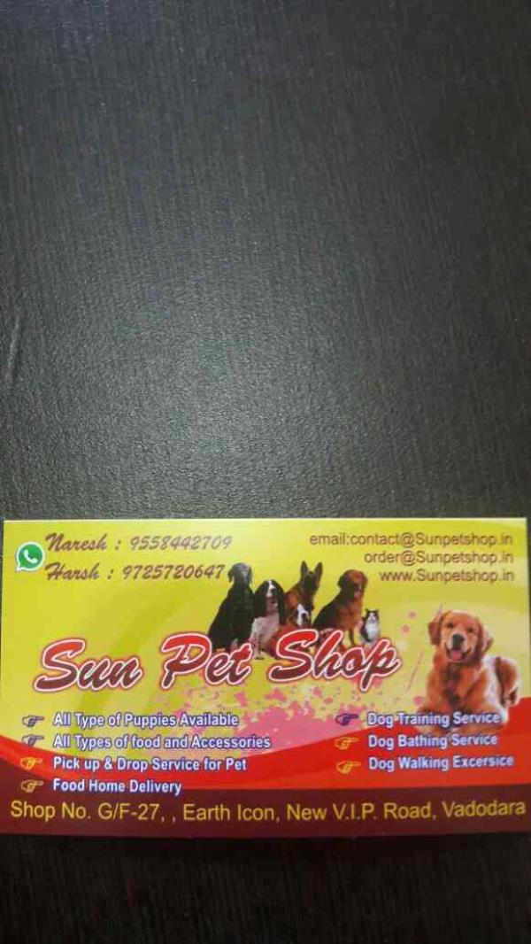 We at Sun pet shop located in Vadodara, gujarat are a leading suppliers of:  1. All types of puppies 2. Dog training services 3. Dog bathing services 4. Dog walking exercises 5. Pets pick up and drop services 6. Dog food- Free home delivery - by Sun Pet Shop, Vadodara