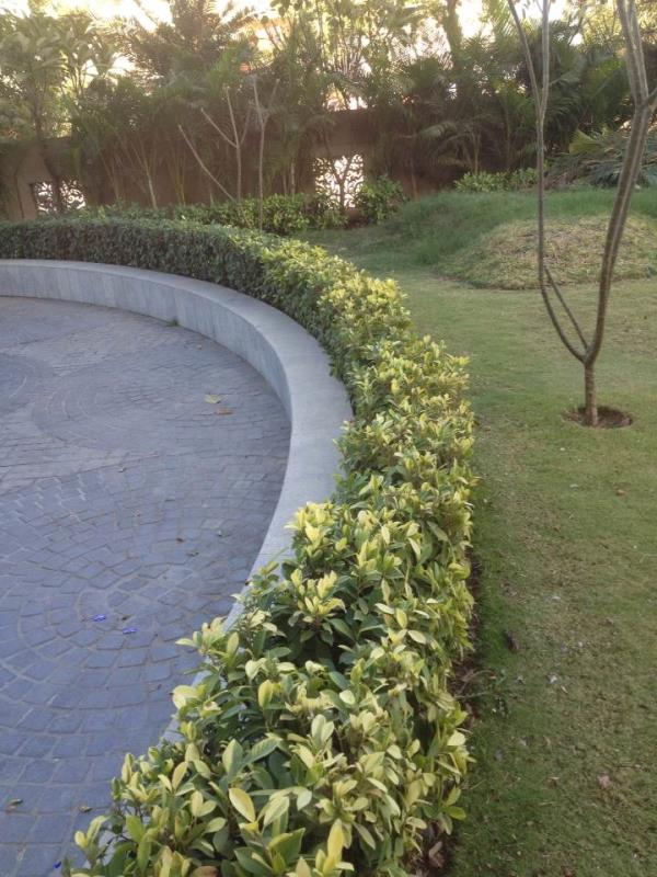 Garden Developing Service - by Garden View, Ahmedabad