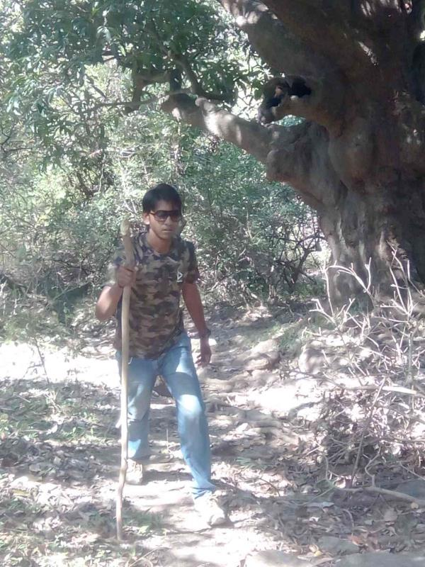 its I leading trek as first man just near to bimali the highest pick of aravali range## alika sports 9829744283 - by Adventure Trekking @ Mount Abu, Mount Abu
