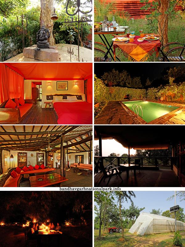 Monsoon forest Bandhavgarh - A perfect accommodation to enjoy nature