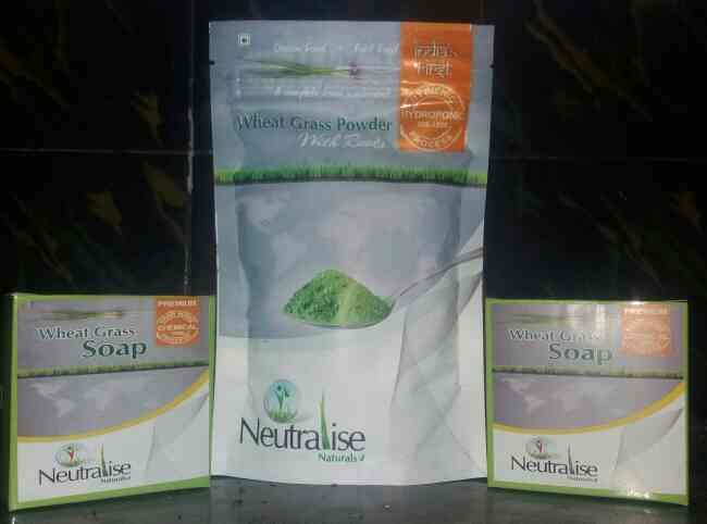 These wellness products are made to improve immunity both internally and externally. we found good results for PSORIASIS. the exact cause of Psoriasis is unknown. however lack of proper immune system, impure blood and genes may contribute to the condition. Wheatgrass Powder With Roots is a natural source to improve your immune system and it is well known for its blood improvement and purification properties. We found great improvement in healing Psoriasis from our product. 1 pack of Wheatgrass Powder With Roots and 2 pack of soap is month pack.