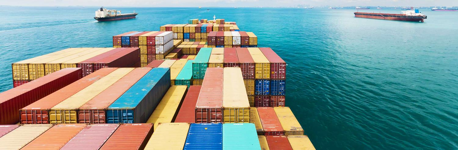 we are Expert in CUSTOM CLEARING Sea Import Custom Clearing Sea Export Custom Clearing Sea Import Items Handled in Delhi/ NCR - by Falcon freight India, New Delhi