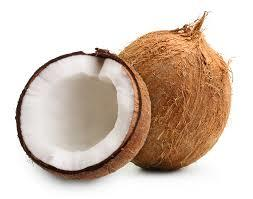 No 1 Quality Coconuts Manufacturer In Coimbatore No 1 Quality Coconuts Manufacturer In Pollachi No 1 Quality Coconuts Mfrs In Coimbatore No 1 Quality Coconuts Mfr In Coimbatore No 1 Quality Coconuts Mfrs In Pollachi No 1 Quality Coconuts Mf - by Vashini Exports, Coimbatore
