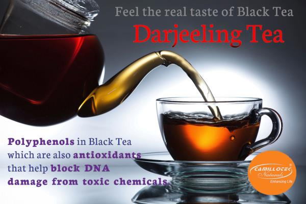 Black tea - Darjeeling tea in Chennai 100% Natural Leaf Tea  Rich in Color, Taste & ingredients. World's best tea leaves, expertly blended. It's Refresh your body & mind faster.  Health & Benefits of Black Tea:  Reduces plaque formation as well as gives oral health.  Gives a Better Heart & lower risk of a stroke.  Contains polyphenols, which are also antioxidants that help block DNA damage from toxic chemicals.  Helps prevent some types of cancer.  Regular tea drinkers have stronger bones and lower probability of developing arthritis.  Lower chance of having or developing type 2 diabetes.  Black tea contains alkylamine antigens that help boost our immune response.