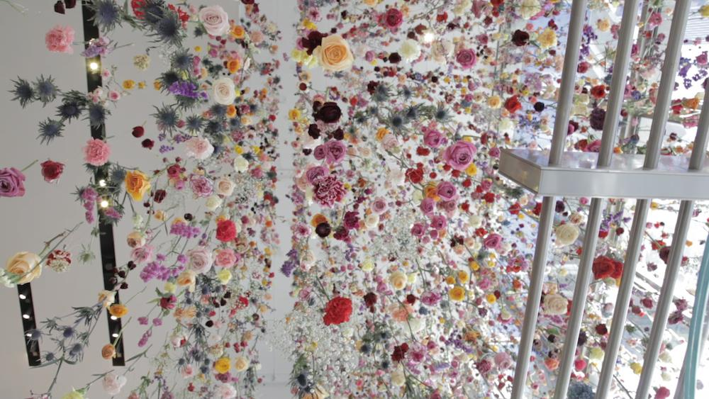 "At Truth Center for Creative Excellence, we teach students to be creative and storytellers from any medium and then convert it into employment... Artist Rebecca Louise Law, who frequently works with flowers to create ephemeral structures, grew up in the London countryside, loving nature. Law hopes the floral installation will be a ""tranquil space of nature, a buffer from the crazy, "" she says in the interview, below.  At Truth Center :  Dedicated to coach and train students for entrance of NID, UCEED and design careers in Gurgaon Focus on nurturing creativity, storytelling and innovation skills of children and youth Consult organisations start ups using design research, design thinking and design management practices Conduct design management, storytelling and design application programs with 100 % placement"