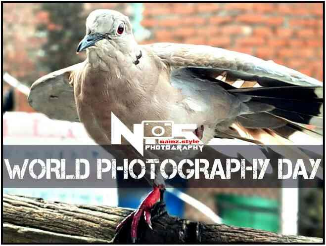 WORLD PHOTOGRAPHY DAY namz.style photography - by namz.style photography, Bareilly