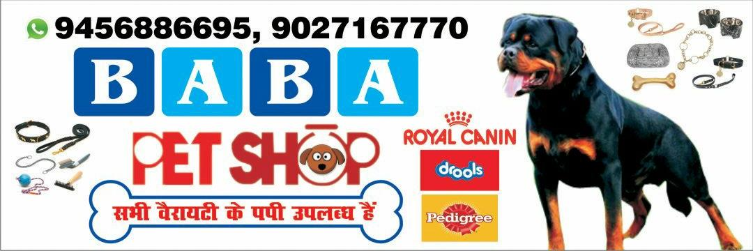 we are Bareilly Best Pet care center in bareilly   for all types of Breed Pet in Bareilly