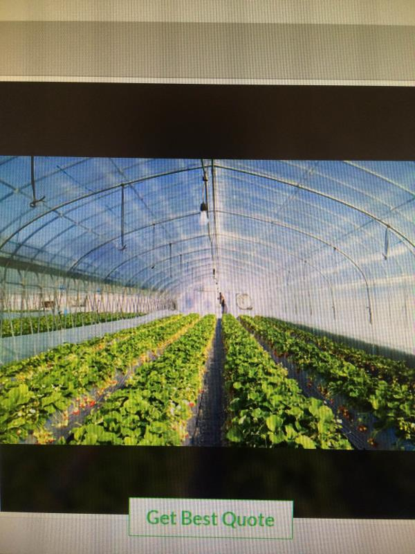 pink vision agrotech marked a distinct and dynamic position in the market by providing the high quality array of agriculture poly house