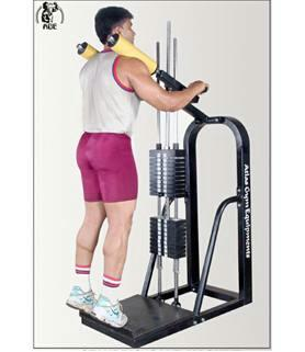 This Standing Calf Machine has a unique feature that make the exercise very easy. It has adjustable screw, which can be adjust according to the height. It has also plate adjustable bars that can be adjust according to the position of exercises.  Standing Calf Machine in vadodara