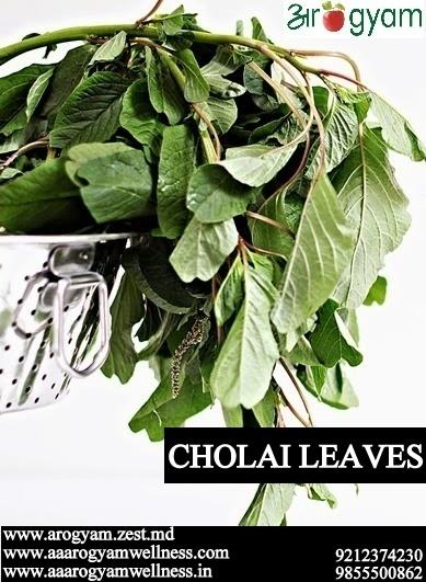 Amaranth Leaves - Power house of Nutrition  I realized in my daily practice talking to the various clients that it's a neglected vegetable, some of you must have not seen ever in your Kitchen..  Just because its not the culture of the house - by Arogyam Health and Wellness Clinic, Delhi