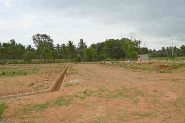 30-40 site behind Airport, Mysore Near JP nagar Ring road