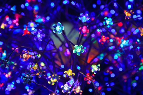 Festival decorative light supplier  We trade and export wide range of festival decorative led lights. Our long lasting decorative lights exports in PAN India.