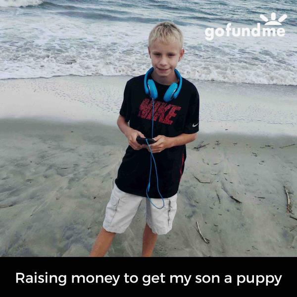 Hey everyone my name is Cruze McAlhany. I'm trying to raise money to get me a puppy..I had 2 pit bulls that were shot ...Please if you can help l would appreciate it a lot.. I want to say thank you to all...I'm $900.00 away from getting me  - by Southern Seasons Heating and Air Conditioning, Charleston
