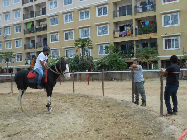 Learn Horse Riding at Zippy : A new equestrian facility in south Bangalore.   Zippy horse riding academy, an equestrian facility which offers guest rides to first time riders, riding courses to enthusiasts, Pre-wedding shoots to the couple and horse stabling to the pride owners.   We are located very close to the city, near kumarans school, holiday village road, off kanakapura main road, Bangalore - 62.    People who are put up in BTM layout, JP nagar, jayanagar, BanashanKari, near Lal Bagh, Mysore road, kanakapura main road, padmanabhanagar and Rajarajeshwari nagar have a very good access to the place when compared to any other school in Bangalore.  Visit us once and we promise that you will come again.  we have courses starting from 5000 INR and the minimum age limit is 6 years.    For more details, call:  Dilip: 9742371317  Abdul: 7259296899