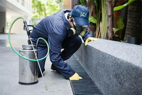 We are the Best pest control service in guindy