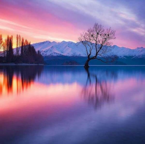 Celebrate New Year in New Zealand Scenic and beautiful Locations.  New Zealand Scenic Tour from India  https://www.freedomtourism.com/home/tour-packages-new-zealand - by Freedom Tourism - Ahmedabad | New Zealand Honeymoon Packages | New Zealand Tours | New Zealand Holiday Packages | NEW ZEALAND TOUR PACKAGE - 7575809237, Ahmedabad