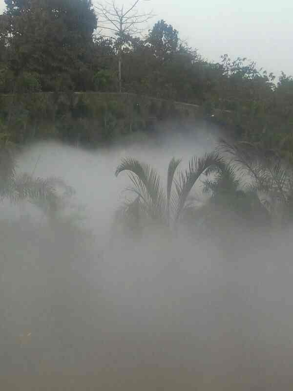 Natural Fogging by Water