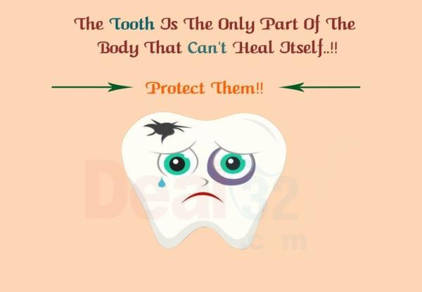 The tooth is the only part of the body that can't heal itself, Protect them, visit your dentist regularly