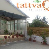 """Tattva-Q App provides. """"Ask Vidya"""" - Post your personal development question 1 to 1  Timeline - Share your thoughts with others Assess Me - Take daily Happiness Quotient Assessments Today's Tattva - Start your day with an empowering thought - by Tattva Q Life Labs, Bangalore"""