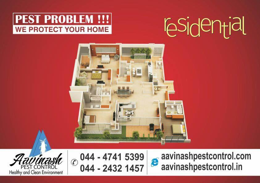 Residential pest control services in Chennai