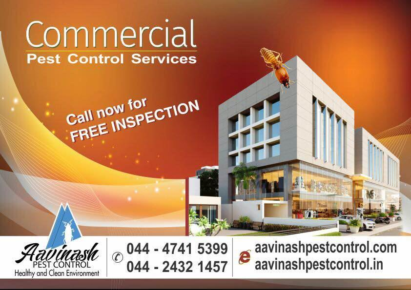 Commercial pest control services in Chennai