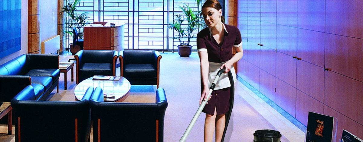 Backed by rich industrial experience in this domain, Aralia Facility Services  are devotedly engaged in offering an extensive range of Housekeeping Services In Delhi. These housekeeping services are performed using quality cleaning material - by Aralia Facility Services @ House keeping services in noida, Gautam Buddh Nagar