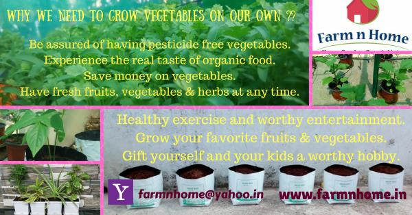 why we need to grow Vegetables on our own ??    Be assured of having pesticide free vegetables.    Experience the real taste of organic food.    Save money on vegetables.    Have fresh fruits, vegetables & herbs at any time.    Healthy exer - by FARM N HOME, Coimbatore