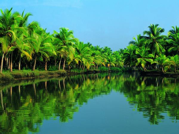 Kerala – God's Own Country...!  Kerala enjoys unique geographical features that have made it one of the most sought after tourist destinations in Asia. An equable climate. A long shoreline with serene beaches. Tranquil stretches of emerald backwaters. Lush hill stations and exotic wildlife. Waterfalls. Sprawling plantations and paddy fields. Ayurvedic health holidays. Enchanting art forms. Magical festivals. Historic and cultural monuments. An exotic cuisine... All of which offer you a unique experience.