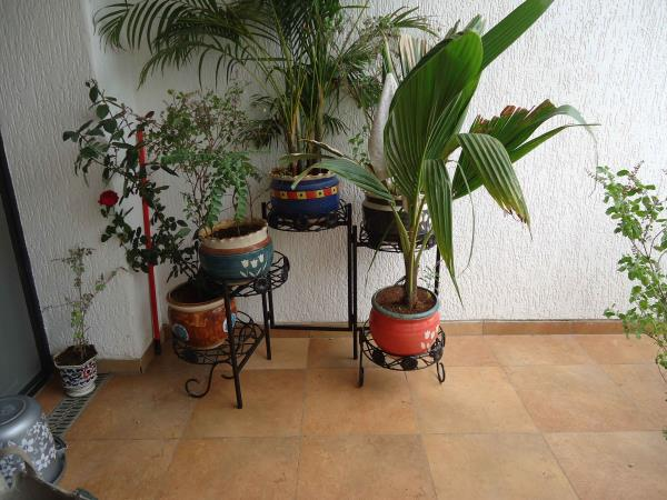 Flower Pot Stands : We are manufacturers of flower pot stands and allied wrought Iron Stands , Swings , and other Furniture . We specialize in making of stainless steel and wrought iron items . We also make custom design and custom size furniture. The furniture made by us is made in cold rolled pipes and is duly powder coated in attractive colors to give good looks and good life