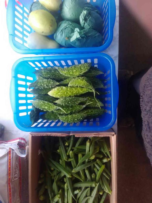 we  become fresh vegetables every Tuesday eg Ladyfinger.  karela  kadu  green chillies and others.   jeden Dienstag   bekommen wir frische gemuese.