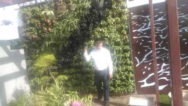 Green Vertical Wall/Bio Wall We had done a new project at karkarduma Delhi, semi indoor Green wall according to client vision and design.ppants are selected by us and all love this thought of Vertical Garden from R.S Enterprises Ranjeet Singh/Rajesh Kumar 9990154546/9911303925