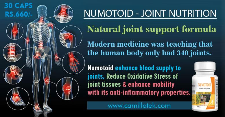 Joint Nutrition, joint health support, Joint Support Formulas, Joint Maintenance, Joint Care, joint pain supplements, joint mobility,  Healthy Joint Structures supplements in Chennai, India.  KEY INGREDIENT(S): Boswellia Serrata Extract, Curcumin (Turmeric Extract), Green Tea Extract, Vegetable lend Extract.  Health Benefits of Numotoid : Enhance mobility with its anti-inflammatory properties. Reduce oxidative stress of joint tissues. Enhance blood supply to joints.