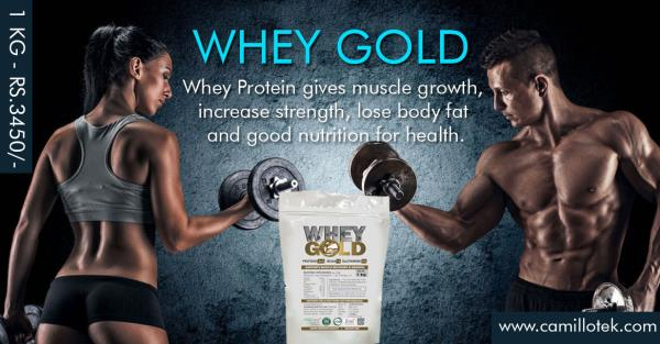 Best Whey Protein Powder,