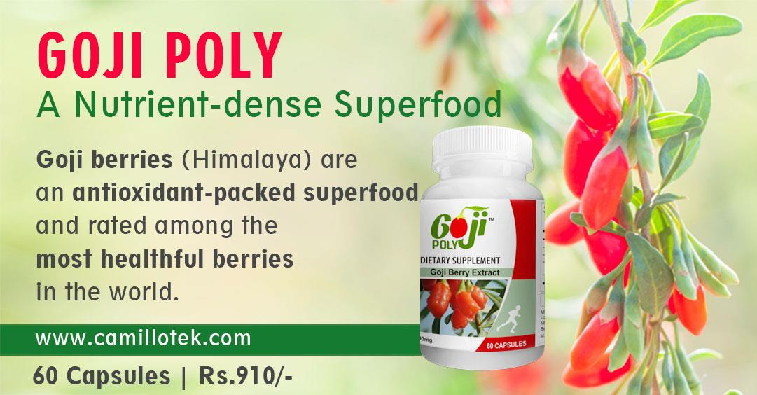 Gojiberry supplements, wolfberry supplements, goji medicine supplement, Gojiberries (Lycium barbarum) capsules, organicgojiberries tablets, GojiBerry Fruit capsules, goji berry nutrition, Goji capsules, GojiBerry ExtractSupplement, goji berry antioxidant, BuyGoji supplements, GojiBerry Tablets, HerbalGoji Supplements, Anti-AgingGoji Supplement, superfood goji supplements dealer, buyer and manufacturer in chennai, India.  Goji berries are an antioxidant-packed superfood and rated among the most healthful berries in the world.Goji berries are grown in Tibet in the Himalayan mountains.  buy now: https://www.payumoney.com/store/buy/camillotek006  more info: http://camillotek.com/all/goji.html