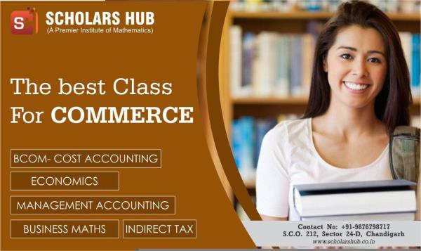 Commerce coaching institute in Chandigarh  11th Accounts Tuition in Chandigarh  11th Economics Coaching in Chandigarh  11th Commerce Classes in Chandigarh  11th Class Accounts Coaching in Chandigarh