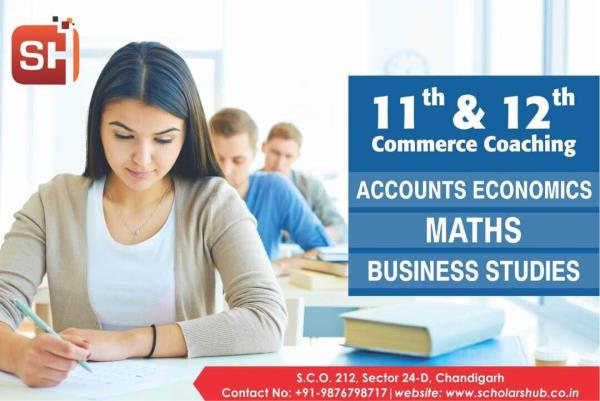 Best Commerce Coaching in Chandigarh  11th Accounts Economics Classes by Mcom CA experienced faculty in Chandigarh  11th Maths for Commerce Students in Chandigarh  Try us with a Demo Class