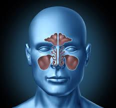 Sinusitis treatment Salt room therapy assist in the removal of inhaled pollutants and allergen from the lungs and airways and reduce sensitivity to airborne triggers such as pollen and dust http://www.respicareindia.com/indications.html