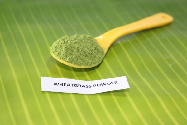 Barley Grass powder is a fantastic superfood for holistic health.  With a range of nutrients including antioxidants, enzymes, fiber and chlorophyll.