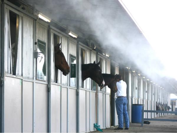Magna Cleaning Systems Pvt Ltd provide  HORSE CLIMATE CONTROL :  Horses are often kept inside barns which may be substantially hotter than outside temperatures due to radiant heating of the structure. Despite their ability to sweat, horses still have difficulty cooling themselves when temperatures become extreme. Because of their large size, their body heat tends to accumulate faster than they can get rid of the excess. Especially in conditions of high humidity, when sweat no longer evaporates to cool the skin, horses are prone to heat exhaustion and heat stroke, which can be extremely dangerous.