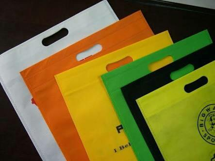 printed non woven bag in Gujarat  we provide wide range of printed non woven bag, in various colours and different types of bag